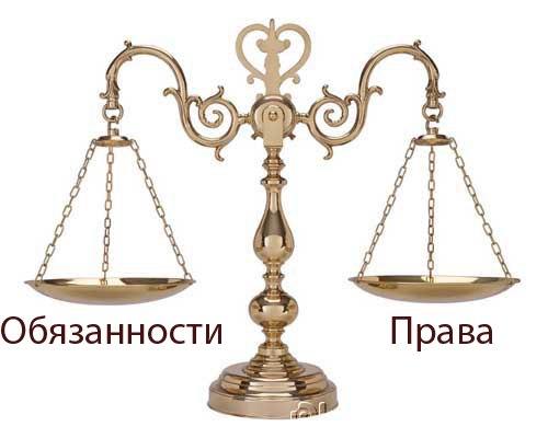 Изображение - Законный представитель физического лица это %D0%B2%D0%B5%D1%81%D1%8B2