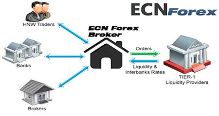 Ecn forex brokers mt5