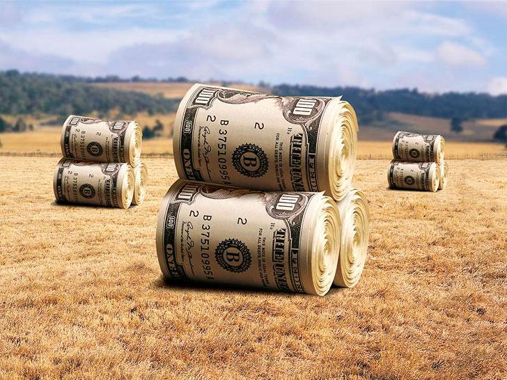 кредит по сельхоз программе