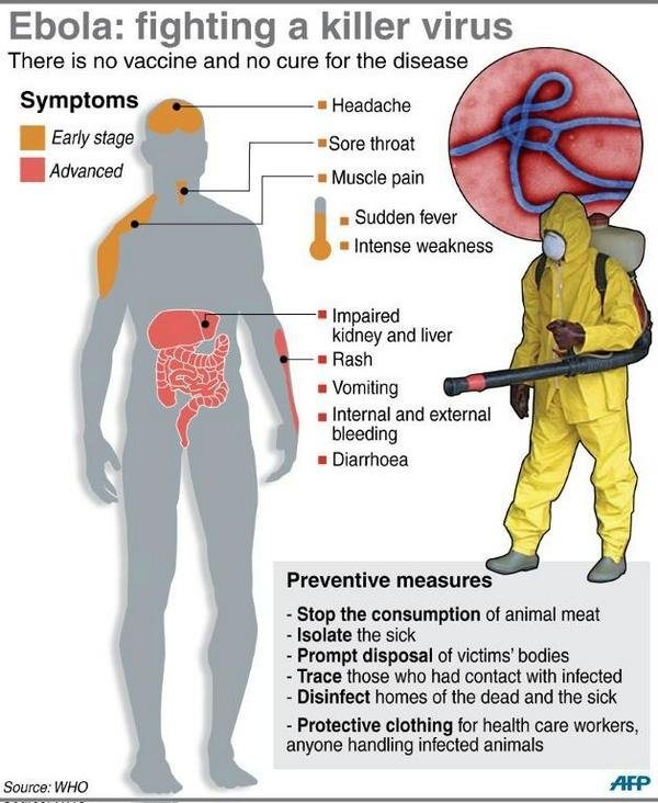 ebola virus causes prevention treatment There is currently no cure for ebola virus disease, nor are there any vaccines available to prevent infection treatment is supportive and typically involves rehydration, nutrition, and medications to manage symptoms (pain, fever, vomiting, etc.