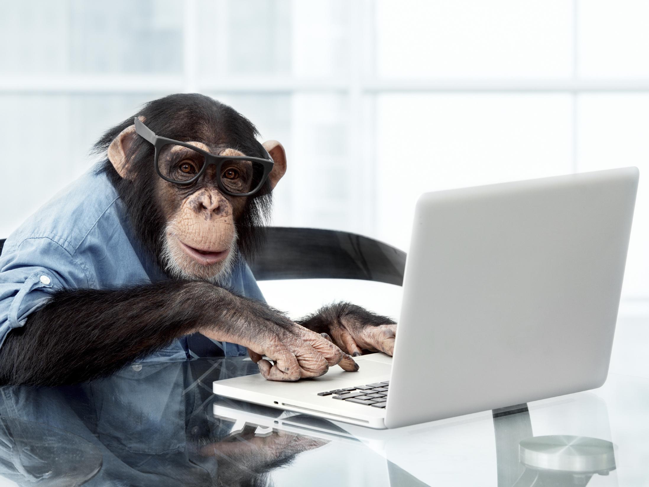 Картинки животные про работу